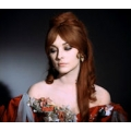 Dance of the Vampires Sharon Tate Photo